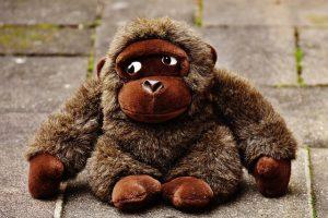 monkey-1821692_640-pelouche