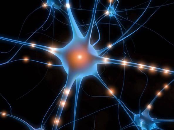 Diagnosi precoce dell'autismo con risonanza magnetica